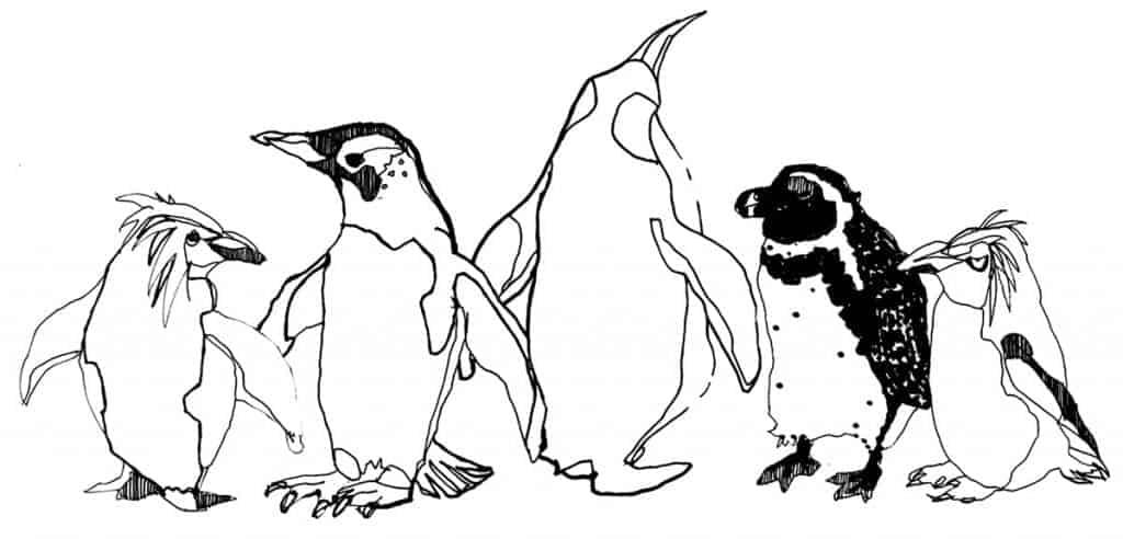 Scottish artists Gillian Kyle's illustration of Dundee Penguins