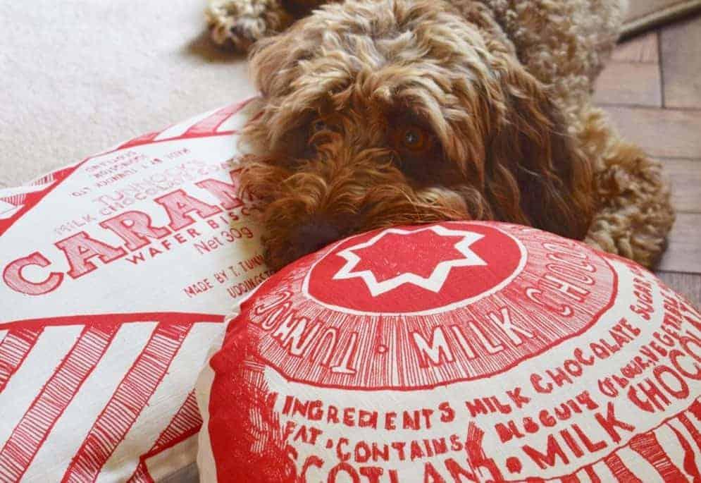 Tunnocks cushions by Scottish artist Gillian Kyle - and Lola the dog!