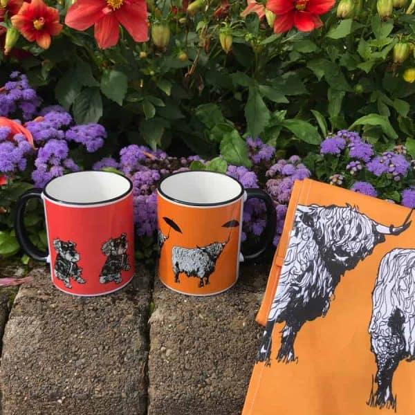 Dougal Highland cow range