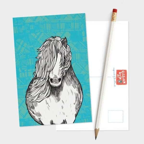 Tartan Pony Shetland Pony postcard by Gillian Kyle